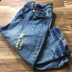 Cato Premium Shorts Size  14